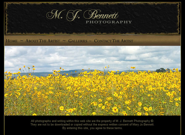 Photography Website Design | Photographers Website Design ...: novastardesign.com/photography-website-design.htm
